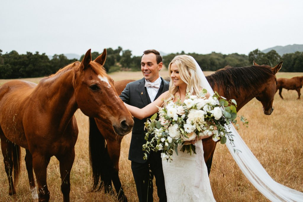 couples portraits with horses