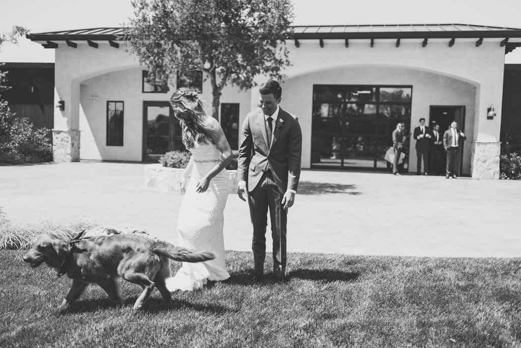 weddings with dogs