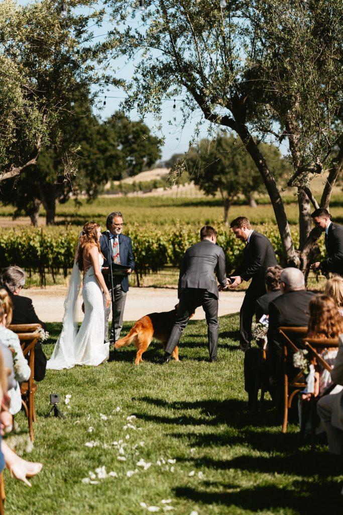 paso robles wedding