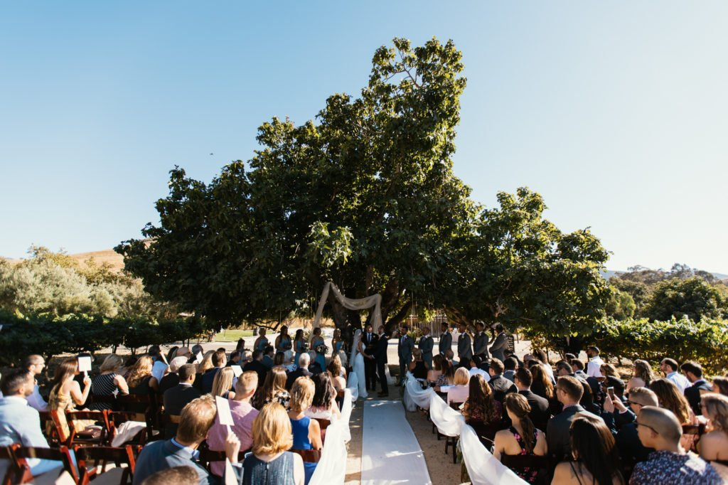 fig tree ceremony at higuera ranch